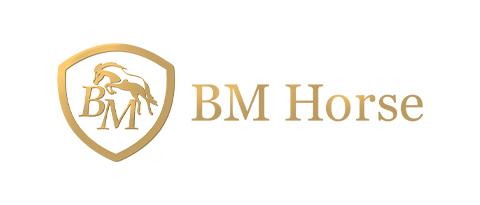 BM Horse